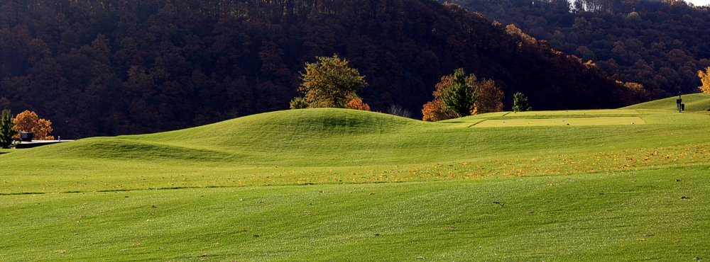 Golf Course Greenery - Easton, PA - Riverview Country Club